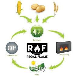 Regal Flame Milan 24 Ventless Wall Mounted Bio Ethanol Fireplace Heater